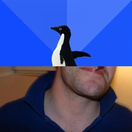 Meme Animals Socially Awkward Penguin Oh Is This The Coke