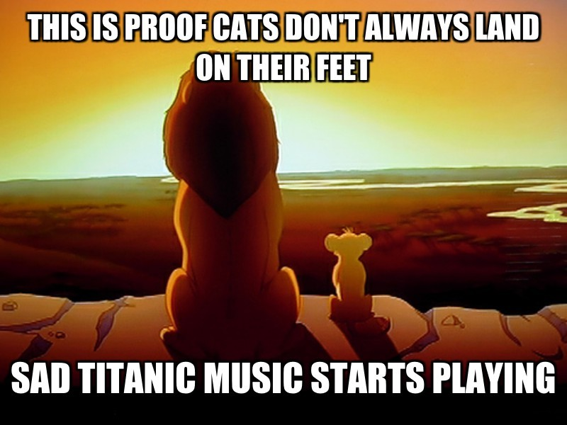 sad titanic music starts playing ; this is proof cats DON'T ALWAYS land on their feet