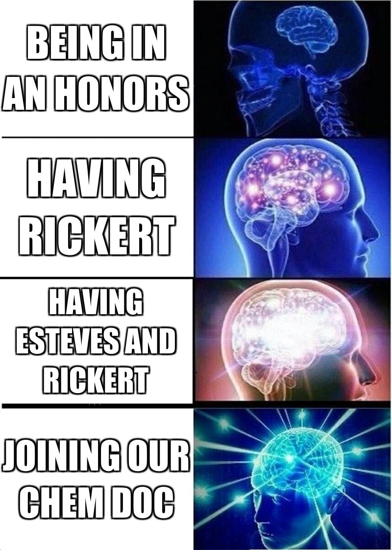 Joining our chem doc; Being in an honors; Having rickert; Having esteves and rickert