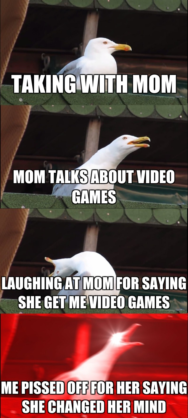 taking with mom; mom talks about video games; laughing at mom for saying she get me video games; me pissed off for her saying she changed her mind