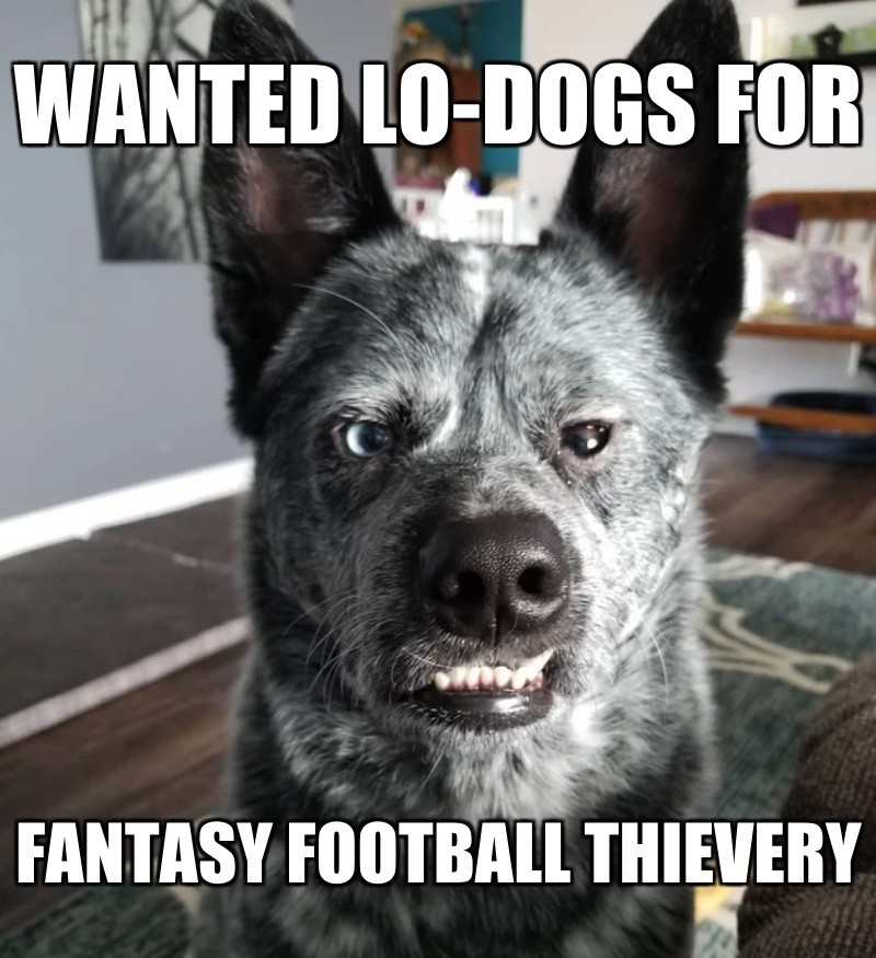 Fantasy football Thievery; wanted Lo-Dogs for