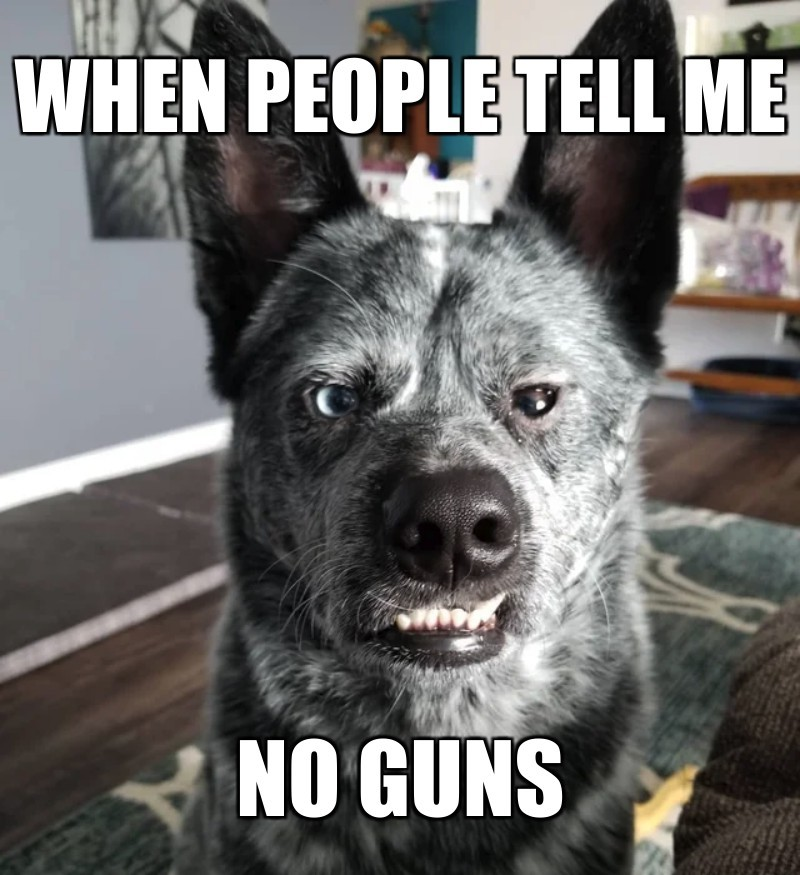 no guns; when people tell me