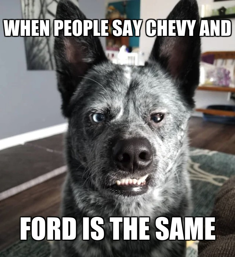 ford is the same; when people say chevy and